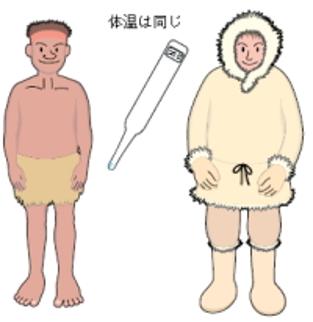 インディバと体温